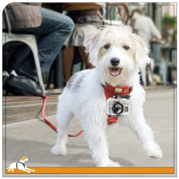 Kurgo Tru-Fit Smart Pet Harness for GoPro - Medium